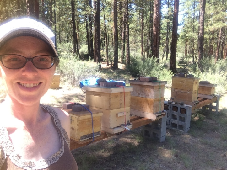This is the apiary, all set up! From left to right, the hives are named: Cleopatra, Sickle, Lil Kim the Queen Bee, Beyonce, and Queen Lateefah.